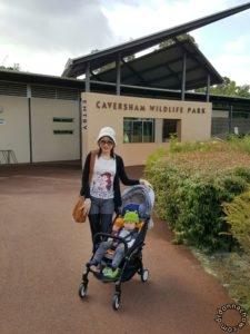 Outside Caversham Wildlife Park