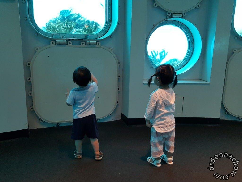 Inside fish eye museum