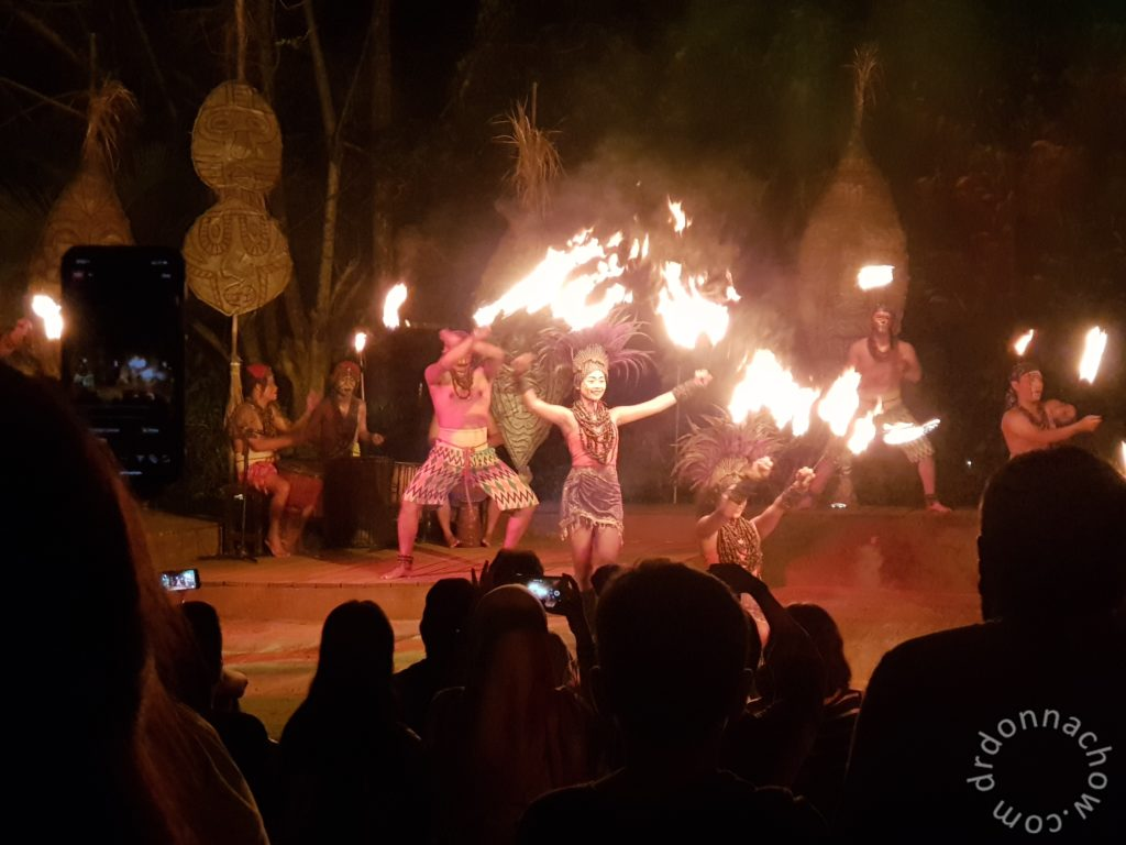 Night performance at the Safari